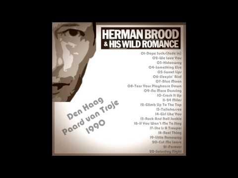 Herman Brood, Den Haag - Paard van Troje 1990