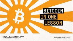 Bitcoin in One Lesson