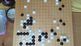 幻庵(先番)vs丈和 文政四年  MR囲碁167 c