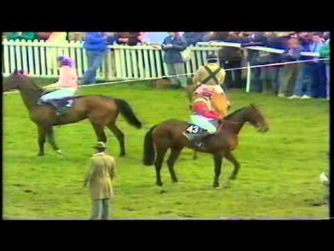 1988 Grand National Aintree Rhyme N Reason extended pre race footage