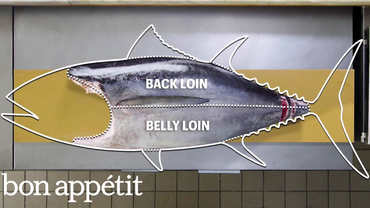 How To Butcher a Whole Tuna  Every Cut of    Fish    Explained
