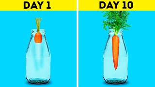 18 AWESOME HACKS TΟ GROW YOUR OWN PLANTS