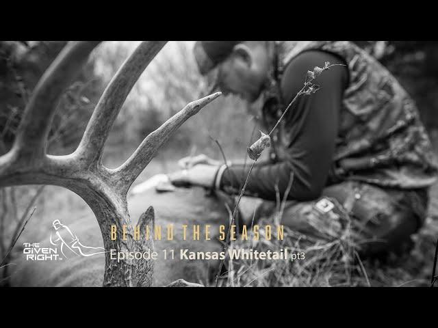 Kansas Whitetial part 3
