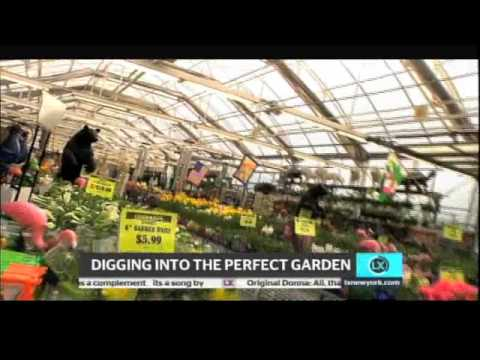 corrado 39 s garden center youtube