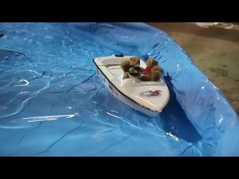 Meet Twiggy, the water skiing squirrel