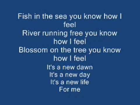 Feeling Good Lyrics