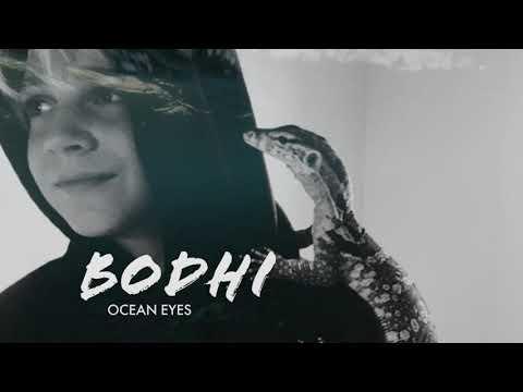 Kristin Hersh - Seeing Sideways Trailer