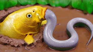 Stop Motion ASMR - The Giant Golden Eel Hunts For Incredible Carp Cooked In Raw Mud