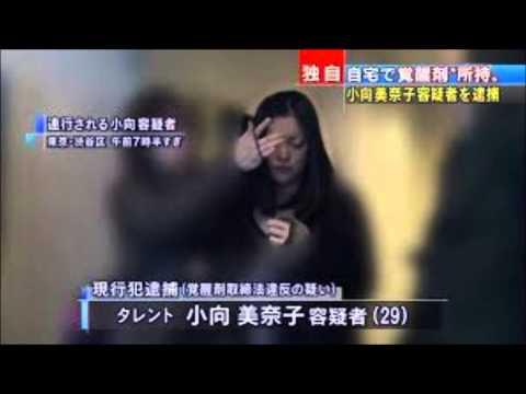 小向美奈子が覚せい剤所持でまた逮捕