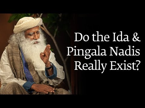 Do the Ida and Pingala Nadis Really Exist?