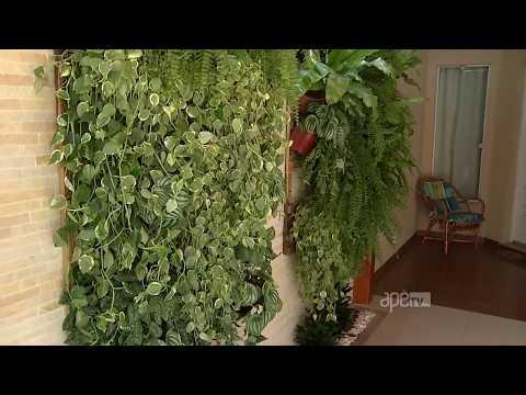Saiba como fazer um jardim vertical na parede da sua casa.