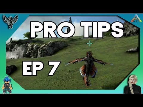 2018 ARK PRO TIPS YOU MAY NOT KNOW ABOUT # 7  [ARK SURVIVAL EVOLVED]