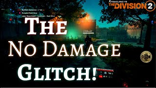 GAME BREAKING God Mode Glitch! - Broken Animations - The Division 2