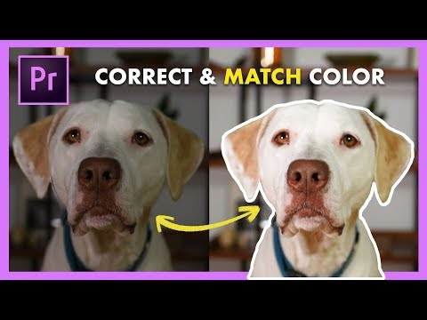 Color Match Different Camera Shots FAST! Adobe Premiere Pro CC Tutorial (New Feature!)