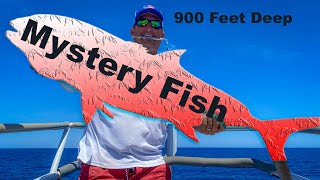 MASSIVE MYSTERY FISH Caught in Super Deep Water {Catch Clean Cook} Hand Crank, NO ELECTRIC!