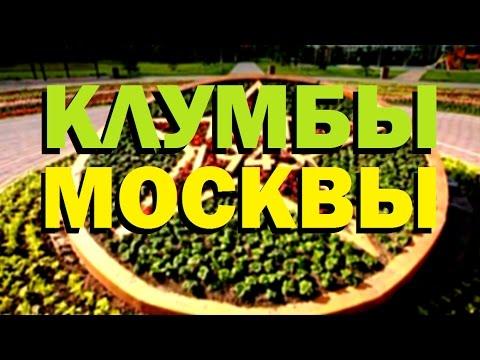 Галилео. Клумбы Москвы 🌷 Flowerbeds Of Moscow