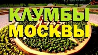 видео Озеленение и цветочное оформление города Москва