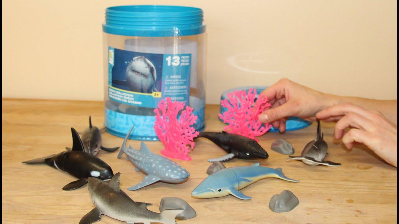 Animal Planet Sealife Bucket Toys R Us 🐹 Youtube