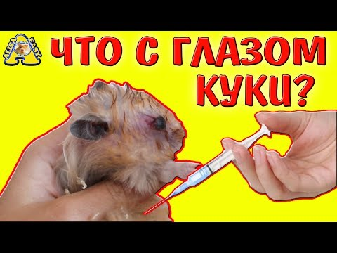АНО «Клиника микрохирургии глаза ВЗГЛЯД