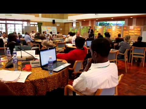 'Sustainable Tree- Based Bio Energy in Sub- Saharan Africa Workshop'.