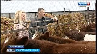 К молодому фермеру едут за советом
