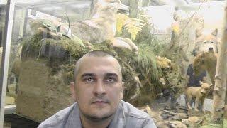 видео Зоологический музей Санкт-Петербурга