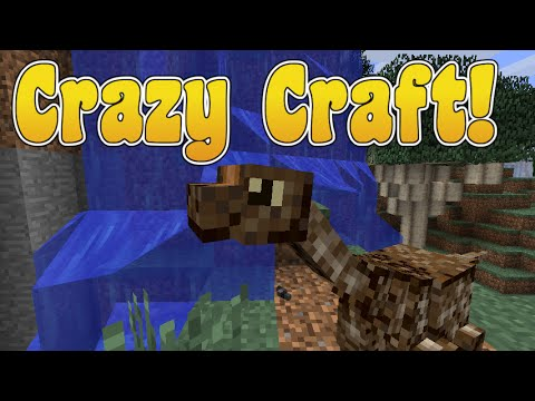 Crazy Craft   Not Loading World