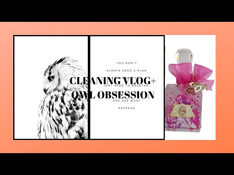 My Owl Obesssion+cleaning vlog