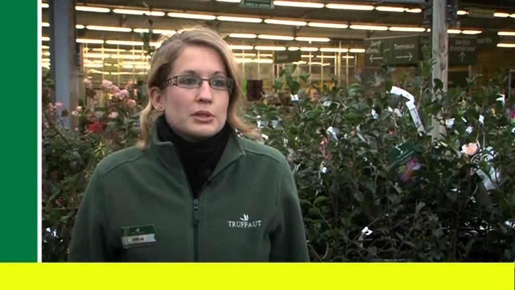 Vendeur conseil en alternance jardinerie truffaut tv for Animalerie truffaut