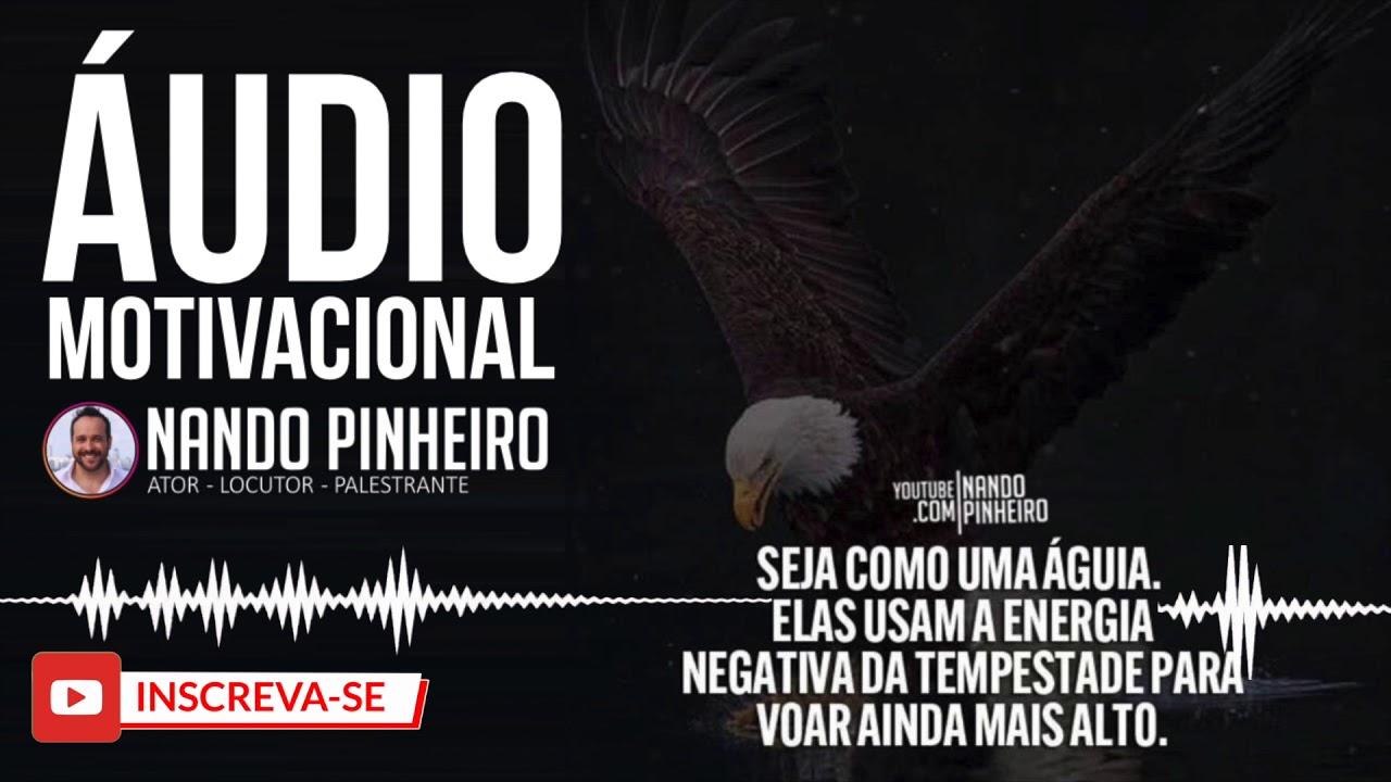 A Aguia E O Pardal áudio Motivacional Nando Pinheiro Blog