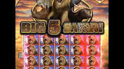 Play Big 5 Safari Slots at Show Me Vegas Slots Casino!