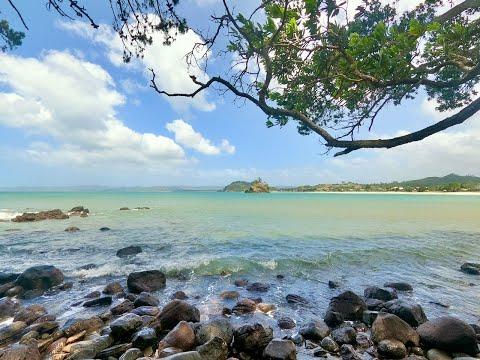 The Walk To New Chums Beach   Coromandel Peninsula
