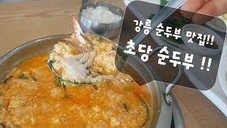 강릉순두부 맛집 초당순두부