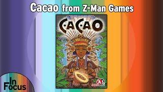 Cacao - In Focus