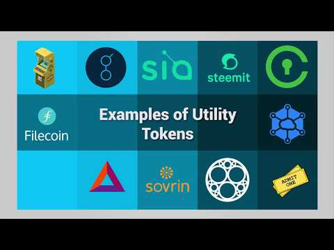 The Nature of a Utility Token