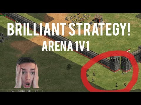 AoE2 - Absolutely Brilliant Arena Strategy!