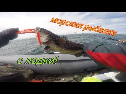 Куча разной рыбы! Морская рыбалка с Борисом Рябченковым!