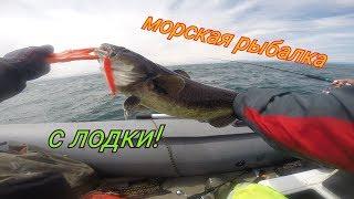 Куча разной рыбы Морская рыбалка с Борисом Рябченковым