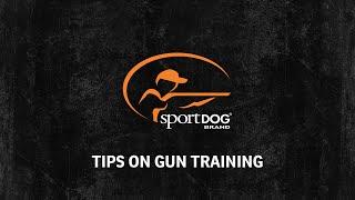 Tom Dokken - Tips on gun training-www.sportdog.com