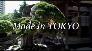 Made in Tokyo~Shunkaen Bonsai Museum~