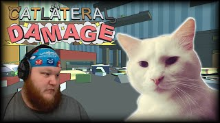 Catlateral Damage | HIGH ON CATNIP