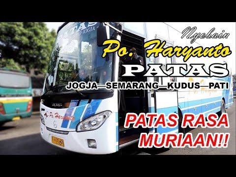Nyobain BUS TERBARU Po Haryanto! PATAS Jogja—Semarang—Kudus—Pati | PATAS RASA MURIAAN!