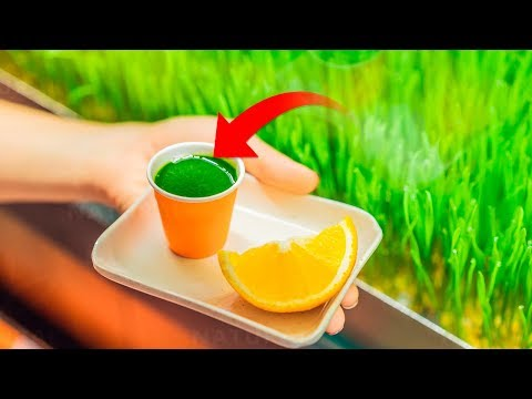 This Vitamin Packed Juice Shot Will Boost Your Health
