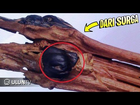 SALAH SATUNYA ADA DI INDONESIA! 5 BENDA YANG BERASAL DARI SURGA
