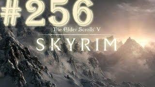 Прохождение Skyrim - часть 256 (Новый доспех и новая цель)