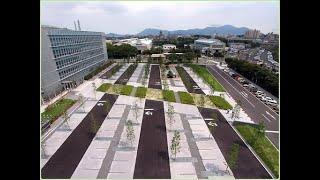 Озеленение парковок