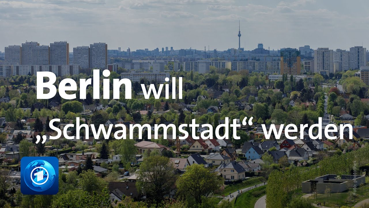 Schwammstadt Konzept der Stadtplanung zur Wasserregulierung   GIM ...