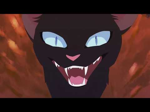 Warrior Cats - The Ultimate Animash