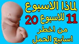 لماذا يعتبر الاسبوع 11 للاسبوع 20 من اخطر اسابيع الحمل ..احذري من هذا