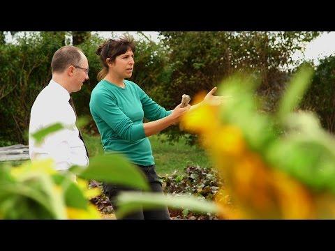 randi kertészek uk jó felirat társkereső webhelyre